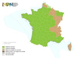 Distribution du frelon asiatique en France au 21/07/2016