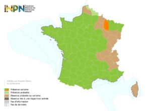 Distribution du frelon asiatique en France au 22/09/2016